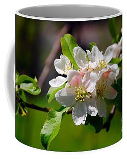 Apple Blossoms Coffee Mug by Elaine Manley