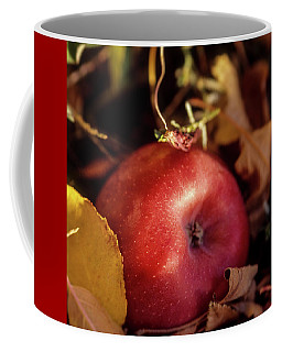 Apple In The Leaves Coffee Mug