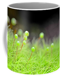 Apple Moss Coffee Mug