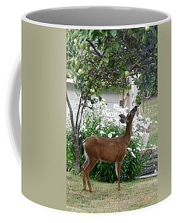 Apple Thief Coffee Mug