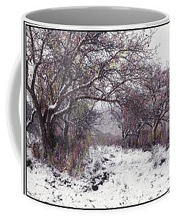 Coffee Mug featuring the photograph Apples Of The Asquamchumaukee by Wayne King