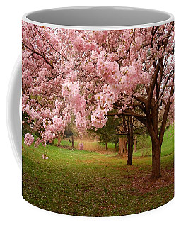 Approach Me - Holmdel Park Coffee Mug