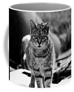 Approaching  Coffee Mug
