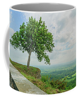 Coffee Mug featuring the photograph Arbor Day by Brad Wenskoski