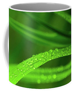 Coffee Mug featuring the photograph Arc Of Raindrops by SR Green