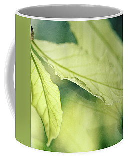 Arcadia Coffee Mug by Connie Handscomb