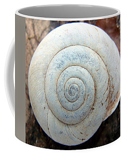 Architecture Of A Snail Coffee Mug