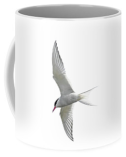 Arctic Tern Flying In Mist Coffee Mug