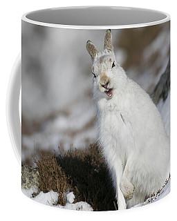 Are You Kidding? - Mountain Hare #14 Coffee Mug