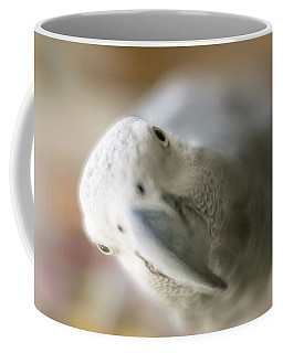 Are You Looking At Me Coffee Mug