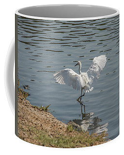 Are You Ready To Dance - Great Egret In Mtn View Ca Coffee Mug