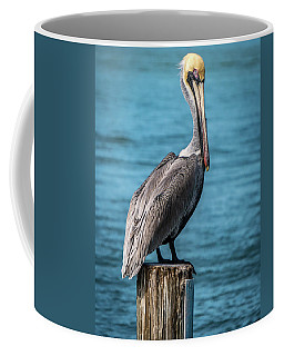 Aren't I Pretty? Coffee Mug by Jane Luxton