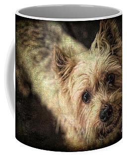Arigato Coffee Mug