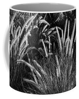 Arizona Desert Grasses Coffee Mug