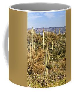 Arizona Desert Coffee Mug