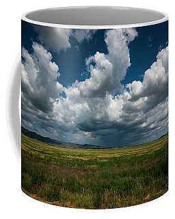 Arizona Storm 2139  Coffee Mug