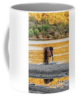 Arizona Wild Horse Playing In Water Coffee Mug