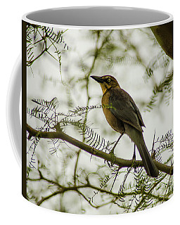 Coffee Mug featuring the photograph Arizona Wildlife by Nick Boren