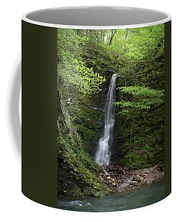 Arkansas Spring Waterfall Coffee Mug