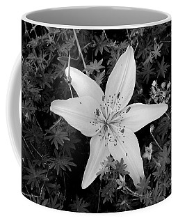 Arms Wide Open Coffee Mug by Marie Neder