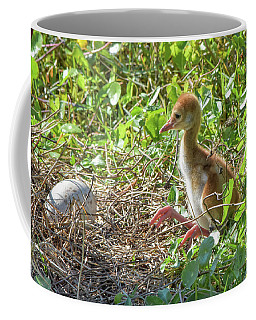 Are You Coming Out? Coffee Mug