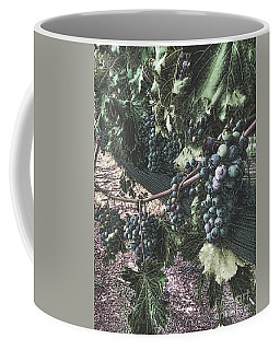 Coffee Mug featuring the photograph Arrington Vineyards Splendor by Luther Fine Art