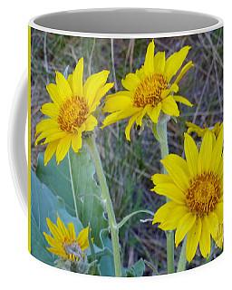 Arrowleaf Balsamroot Flower Coffee Mug