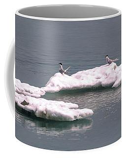 Arctic Terns On A Bergy Bit Coffee Mug