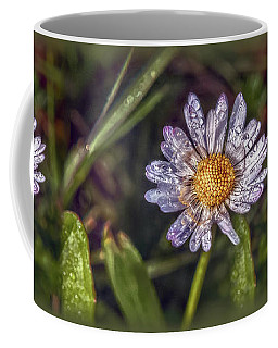 Coffee Mug featuring the photograph Daisy by Hanny Heim