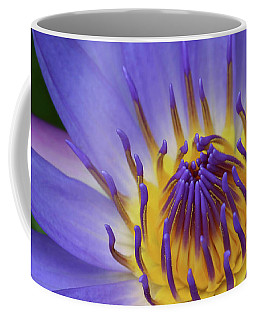 The Lotus Flower Coffee Mug