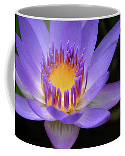 Coffee Mug featuring the photograph My Soul Dressed In Silence by Sharon Mau