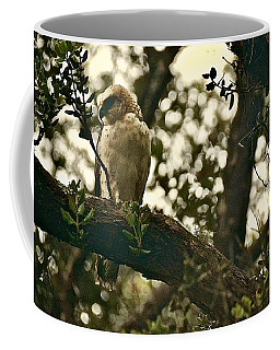 Io - Hawaiian Hawk Coffee Mug