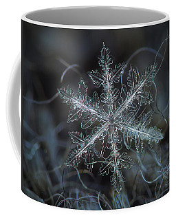 Coffee Mug featuring the photograph Leaves Of Ice by Alexey Kljatov
