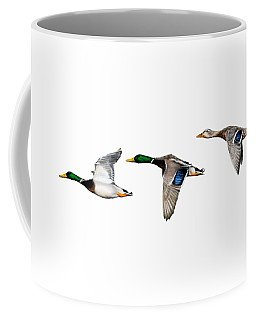 Flying Mallards Coffee Mug