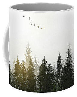 Coffee Mug featuring the photograph Forest by Nicklas Gustafsson