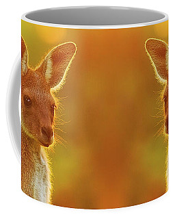 Sunset Joey, Yanchep National Park Coffee Mug by Dave Catley