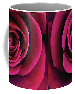 Coffee Mug featuring the photograph Love Is A Rose by Linda Lees