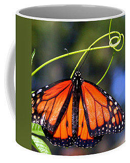 Monarch Butterfly Coffee Mug by Laurel Talabere