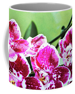 Coffee Mug featuring the photograph Hot Pink Moth Orchid by Shawna Rowe