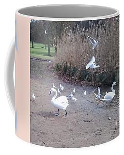 Swans 4 Coffee Mug