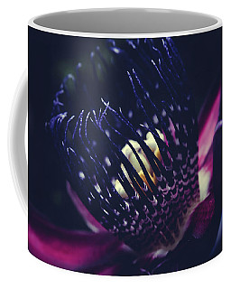 Coffee Mug featuring the photograph Passiflora Alata - Winged Stem Passion Flower - Ruby Star - Ouva by Sharon Mau