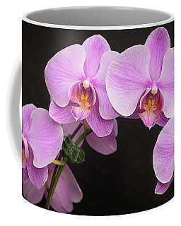 Light On The Purple Please Coffee Mug