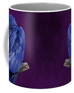 Hyacinth Macaw Panoramic Coffee Mug