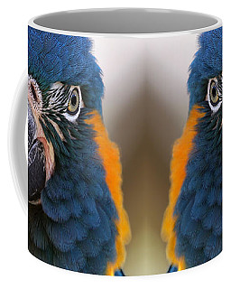 Blue-throated Macaw Close-up Coffee Mug