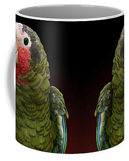 Cuban Amazon Parrot Coffee Mug