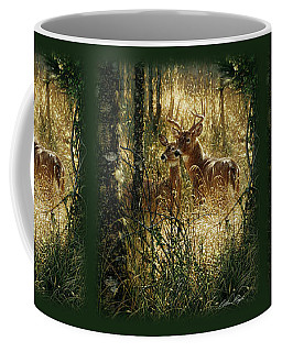 Whitetail Deer - A Golden Moment Coffee Mug
