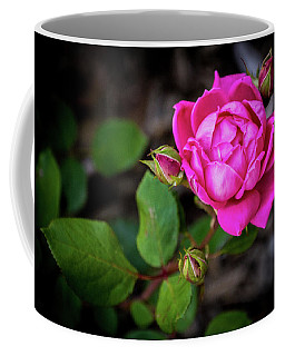 Knockout Rose Coffee Mug