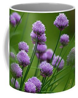 Herb Garden. Coffee Mug by Clare Bambers