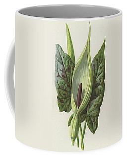 Arum, Cuckoo Pint Coffee Mug