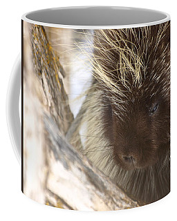 Coffee Mug featuring the photograph As Soft As A Pincushion by DeeLon Merritt